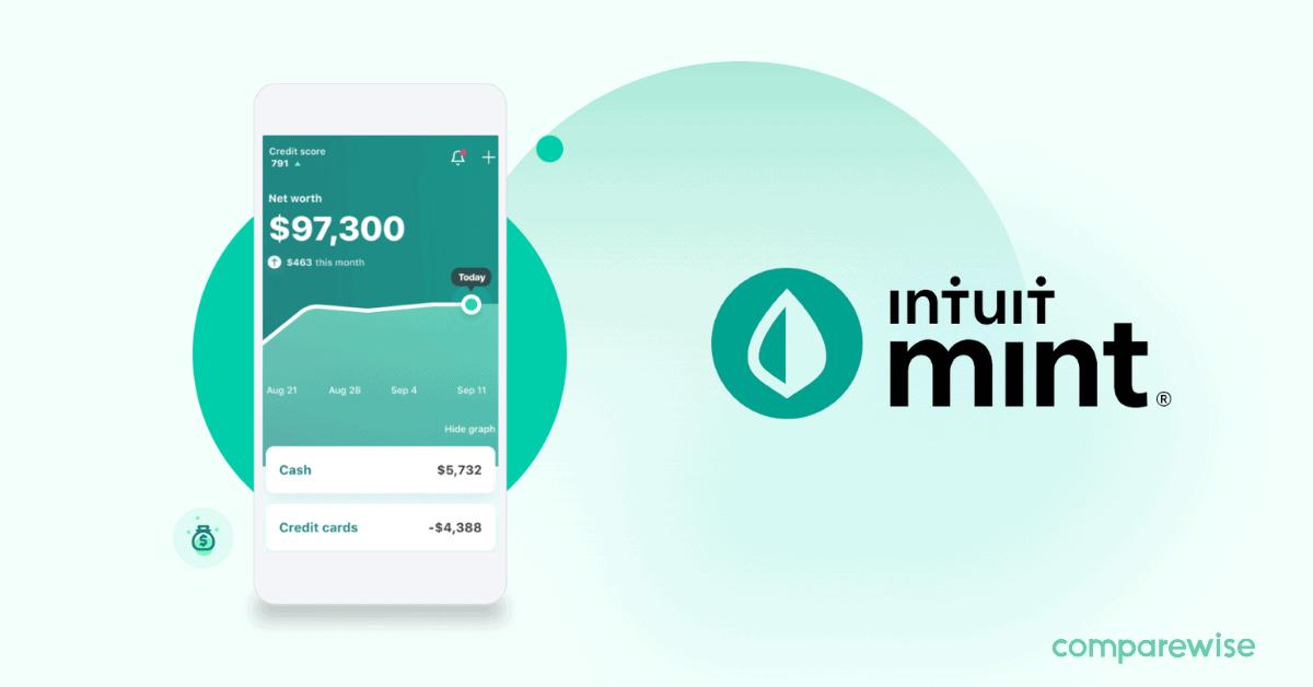 Mint Review 2021